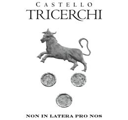 Billede til producenten Castello Tricerchi
