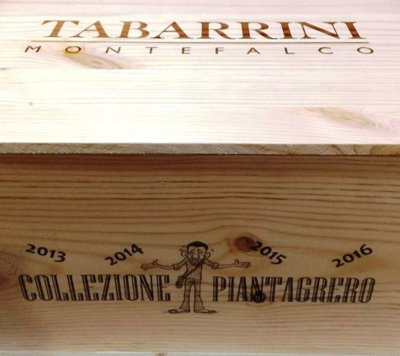 Tabarrini Rosso dell`Umbria Piantagrero vertikal i trækasse